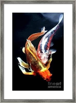 Coi Duo Framed Print by Jonny Bean