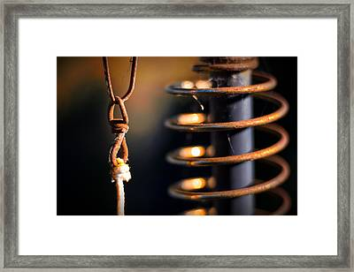 Framed Print featuring the photograph Coil by Tim Nichols