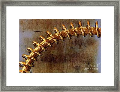 Framed Print featuring the photograph Coiled By Kaye Menner by Kaye Menner