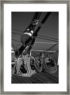 Coiled Lines Framed Print