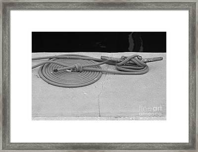 Coiled Rope Framed Print by Robert Wilder Jr