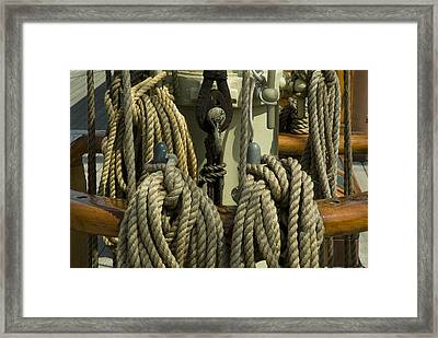 Coiled Ropes Hanging On An Old Wooden Framed Print by Todd Gipstein