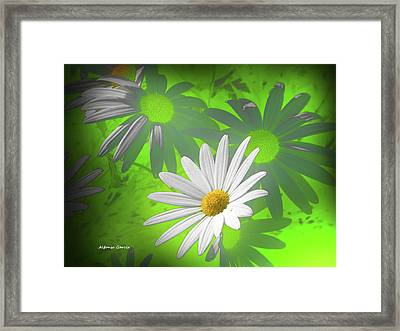 Framed Print featuring the photograph Cola Para El Sol by Alfonso Garcia