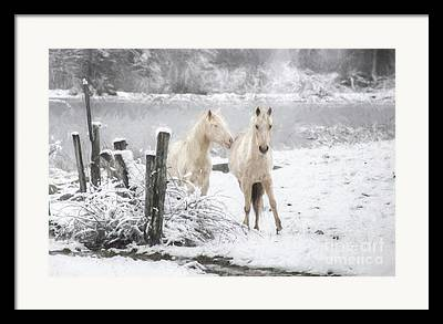 Pasture With Snow Framed Prints