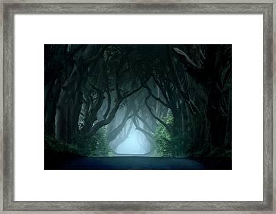 Cold And Blue Morning At Dark Hedges Framed Print by Jaroslaw Blaminsky