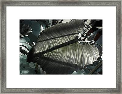 Cold As Iron Framed Print