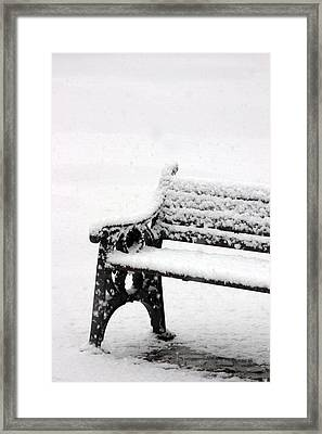 Cold Bench Framed Print by Jez C Self