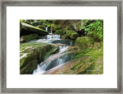 Cold Brook - Randolph New Hampshire Framed Print by Erin Paul Donovan