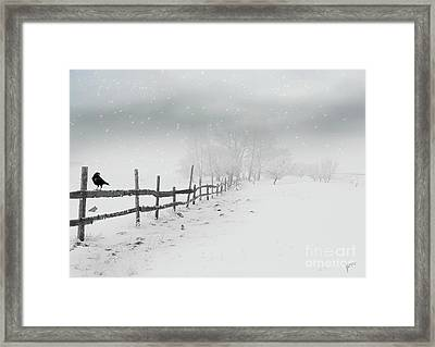 Cold Crow Framed Print