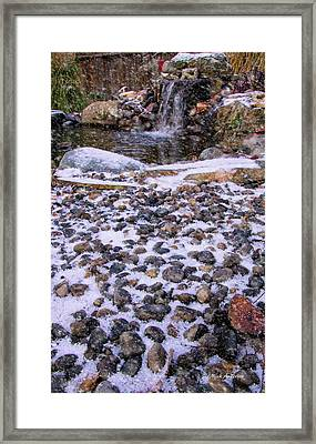 Cold Day At The Pond Framed Print