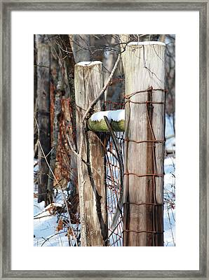 Cold Division Framed Print by Peter  McIntosh