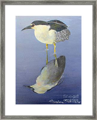 Cold Feet Framed Print