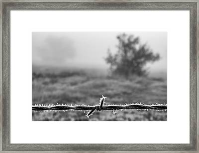 Cold Frosty Morning Framed Print by Monte Stevens