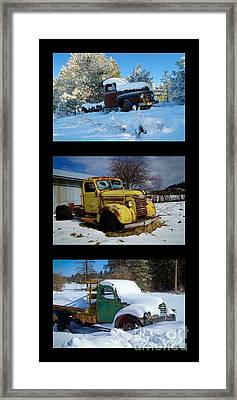 Cold Guys Framed Print by Idaho Scenic Images Linda Lantzy