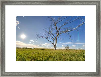 Cold Hands Framed Print by Wayne Stadler