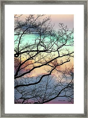 Cold Hearted Bliss Framed Print by Christina Rollo