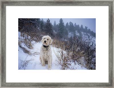Cold Hiking Trail Framed Print