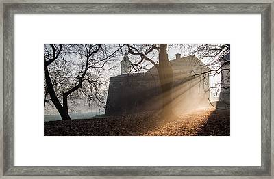 Cold Morning Framed Print by Davorin Mance