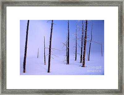 Framed Print featuring the photograph Cold Morning by Edward R Wisell