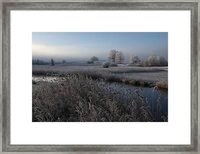 Cold Framed Print by Nina Pauli