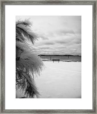 Cold Park Bench Framed Print