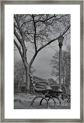 Cool Seats Framed Print by Terri LeSaint-Keller