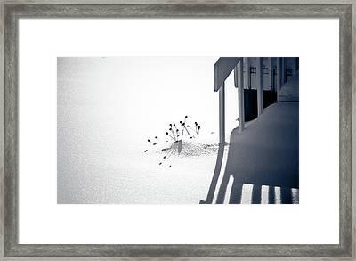 Cold Shadows Framed Print
