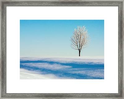 Cold Snap Framed Print