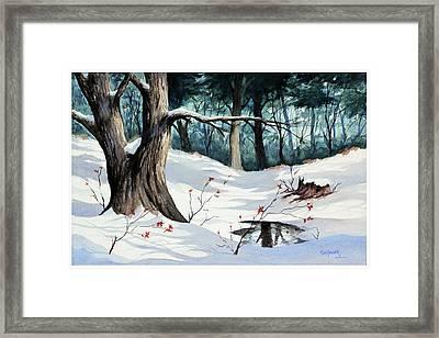 Cold Water Framed Print by Bob Hallmark
