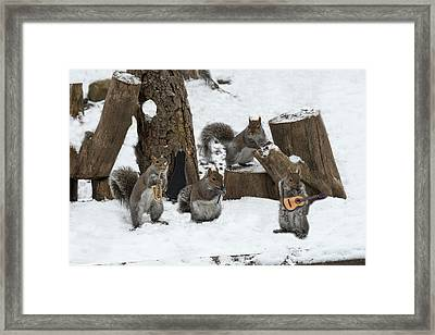 Cold Weather Can't Stop A Good Band Framed Print by Dan Friend