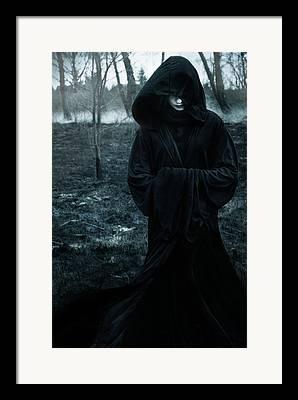 Silent Forest Framed Prints