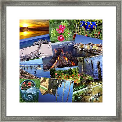 Framed Print featuring the photograph Collage Photography By Sascha Meyer by Sascha Meyer