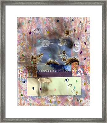 Collage3 Framed Print