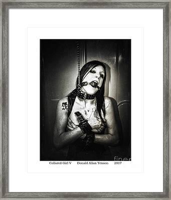 Collared Girl V Framed Print by Donald Yenson