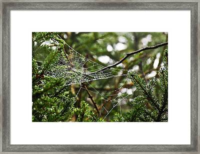 Collecting Raindrops Framed Print