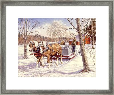 Collecting The Sap Framed Print
