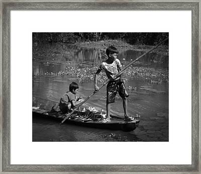 Collecting Water Lilies Framed Print
