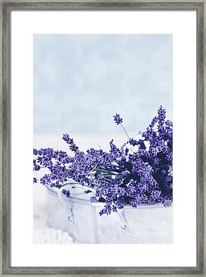 Framed Print featuring the photograph Collection Of Lavender  by Stephanie Frey