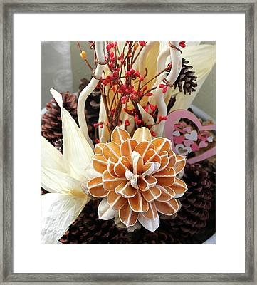 Collections Framed Print by Lorna Maza