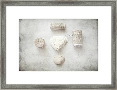 Collections 'seashells And Wine Corks' Framed Print