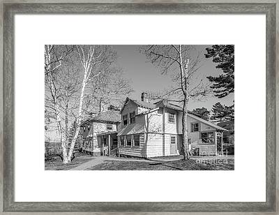 College Of The Atlantic Seafox Residence Framed Print