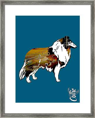 Collie Collection Framed Print