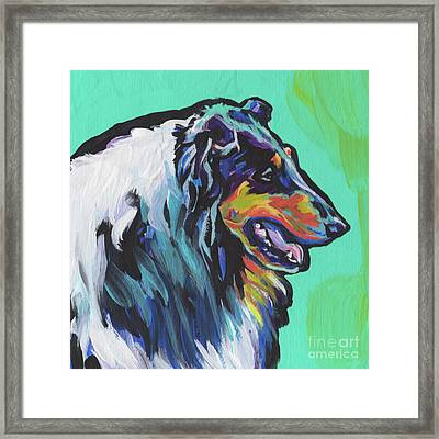 Collie Collie Framed Print by Lea