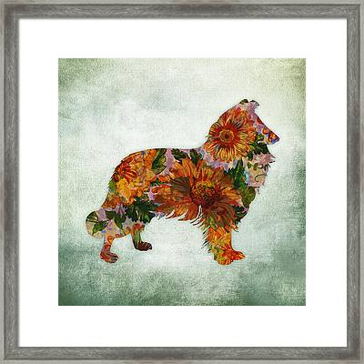 Collie Floral On Green Framed Print