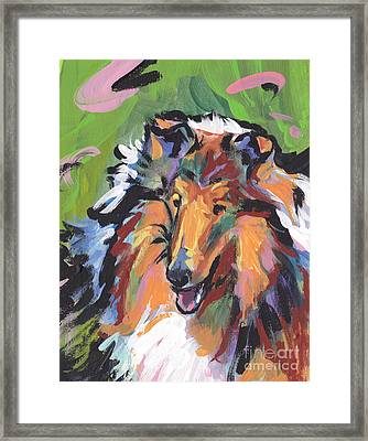 Collie Folly Framed Print by Lea S