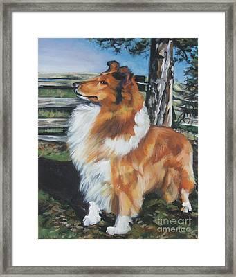 Collie On The Farm Framed Print by Lee Ann Shepard