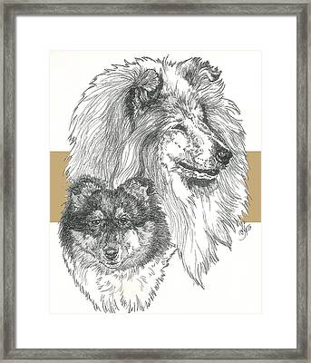 Collie - Rough Coat Framed Print by Barbara Keith