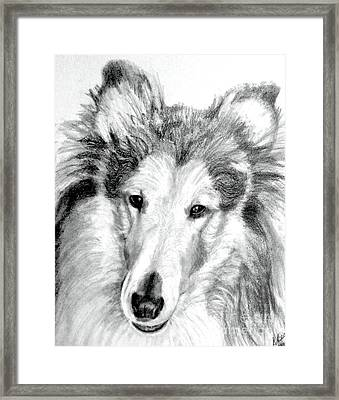 Collie Rough Lover Framed Print by Susan A Becker
