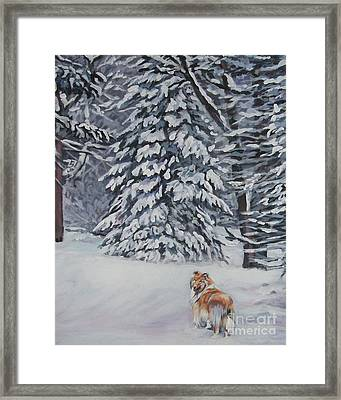 Collie Sable Christmas Tree Framed Print by Lee Ann Shepard
