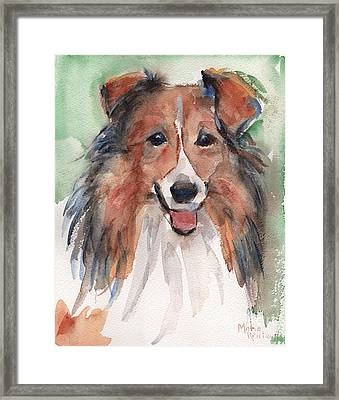 Collie, Shetland Sheepdog Framed Print by Maria's Watercolor
